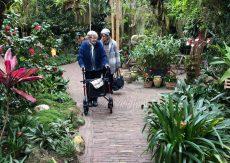 Bezoek Orchideeën Hoeve een succes
